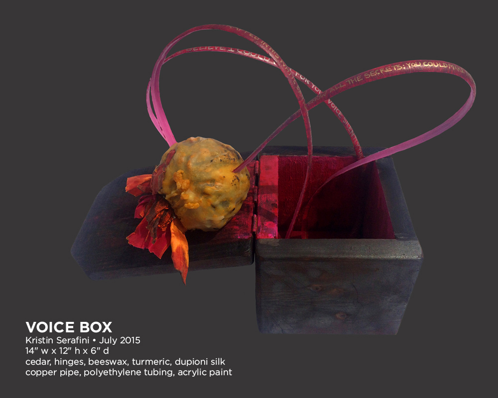 voice-box-01