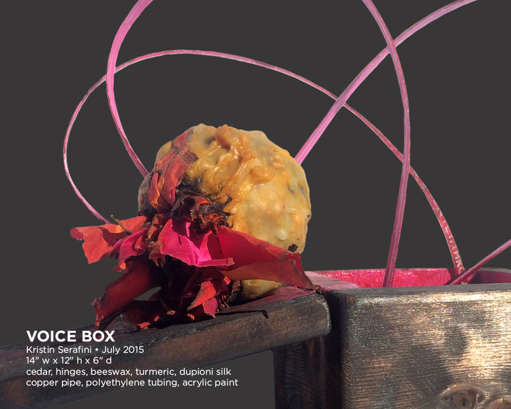 voice-box-02