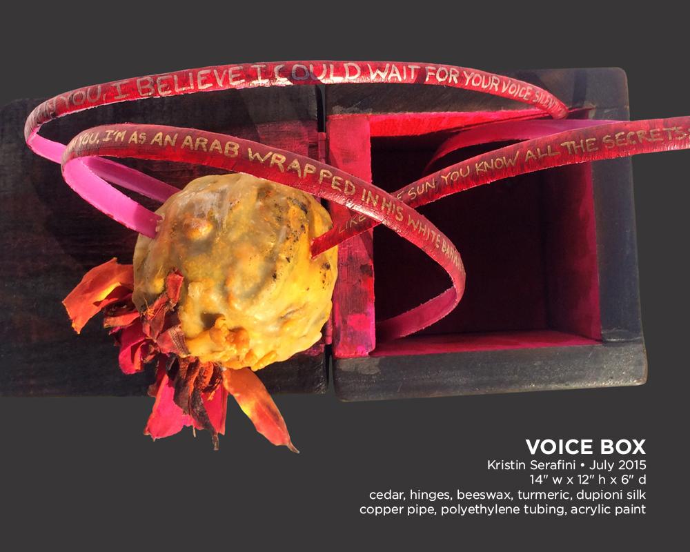 voice-box-03