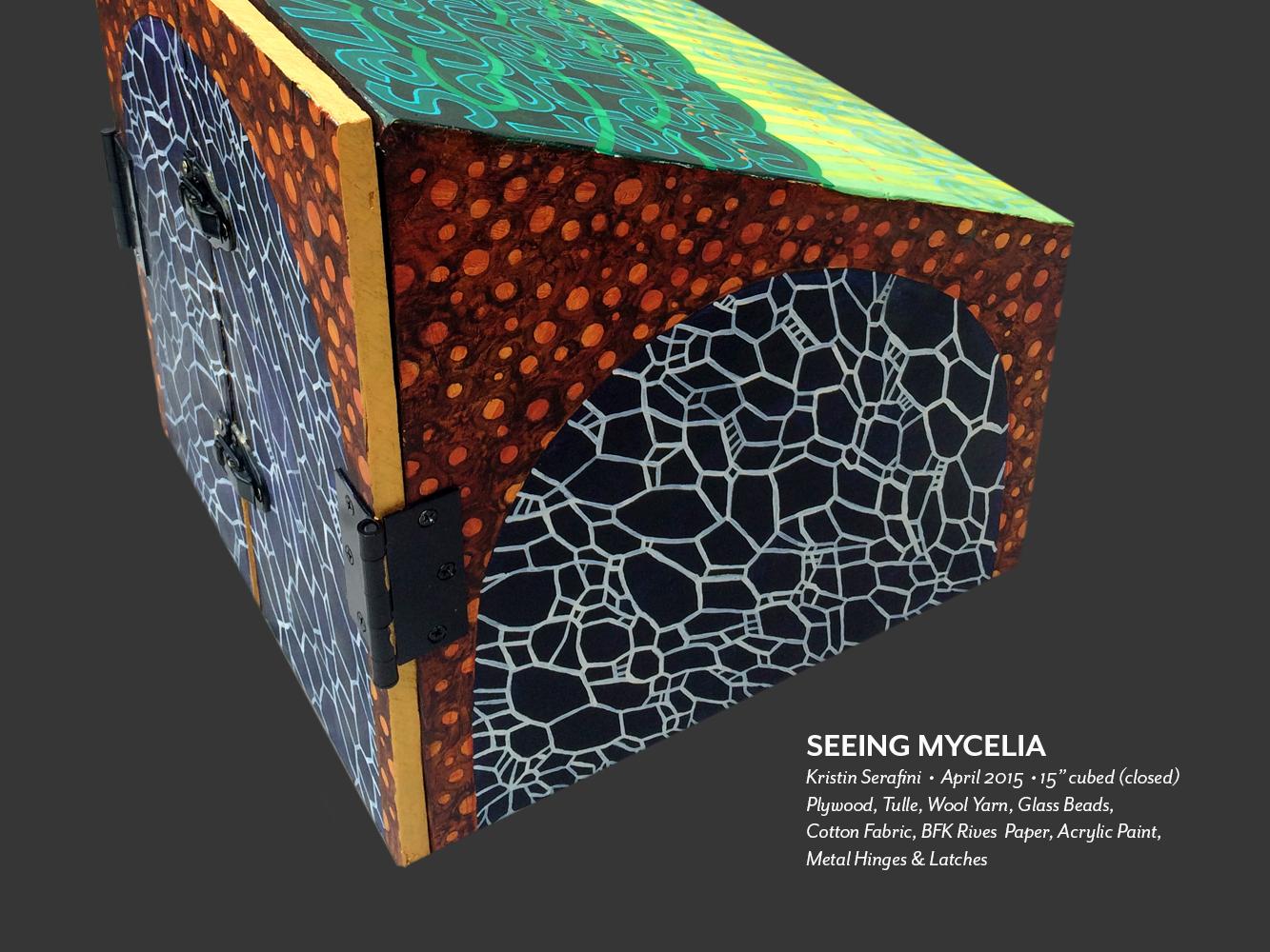 seeing-mycelia-01