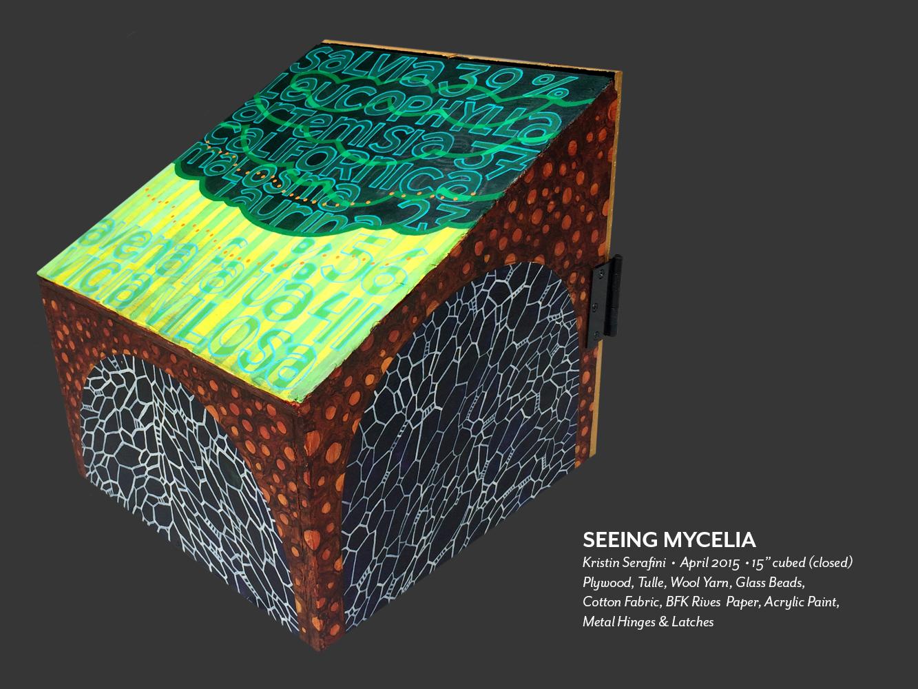 seeing-mycelia-02